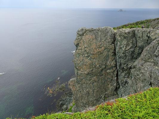 Urlaub in Neufundland: Steilküste nahe Twillingate.