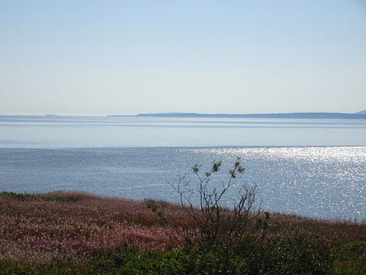 Besuch im Forillon Nationalpark: Blick über den Sankt-Lorenz-Golf Richtung Percé.