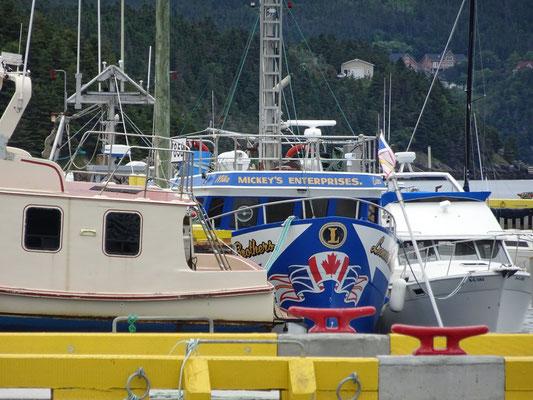 Urlaub in Neufundland: Boote im Hafen von Placentia.