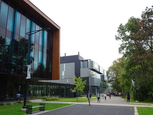Am UofT Campus von Mississauga.