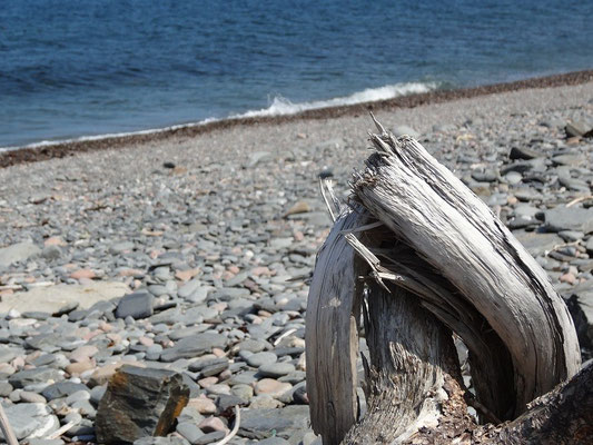 Strände gibt es im Cape Breton Highlands National Park auch, vor allem an der Ostseite, wo der Cabot Trail weniger steil ansteigt.