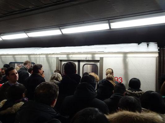 Winter in Toronto: Nur Anschauen, nicht Einsteigen! Hier fährt uns zur Abwechslung mal ein leerer Zug vor der Nase weg.