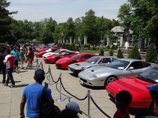 Casa Loma Toronto: Besucher betrachten die zur Schau gestellten Ferraris.
