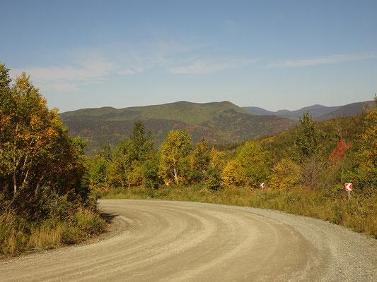 Urlaub in Quebec: Blick auf herbstlich gefärbte Wälder von einer Kurve im Parc national de la Gaspésie.