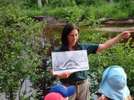 Unterwegs im Terra Nova Nationalpark: Ein Wildhüter erklärt grossen und kleinen Besuchern Wissenswertes über Biber.
