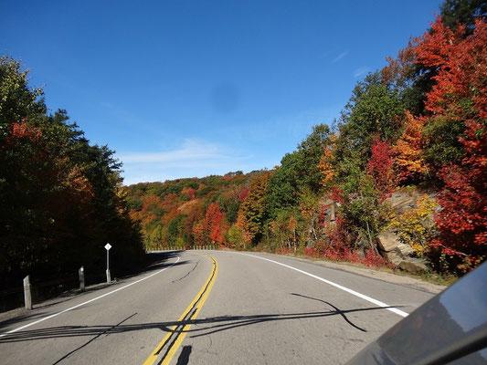 Schon der Weg zum Algonquin Provincial Park ist während der Fall Colors ein Erlebnis.