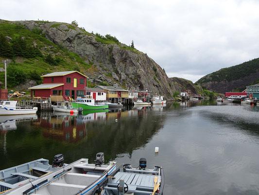 Urlaub in Neufundland: Blick von der Bootsanlegestelle in Quidi Vidi.