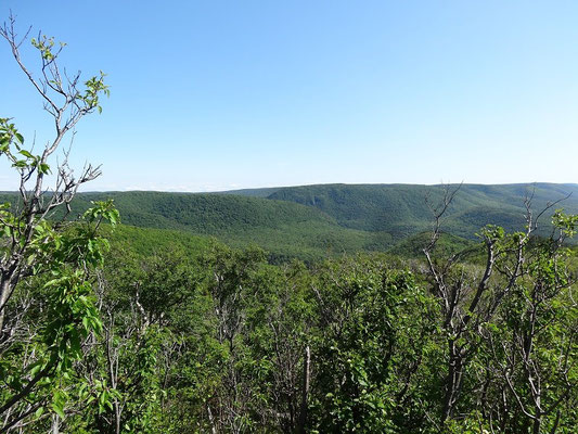 Blick auf die grüne Pracht des Cape Breton Highlands National Park.