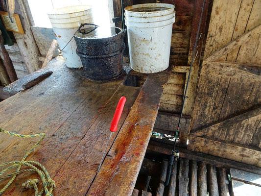 Fischverarbeitung - Ein blutiges Handwerk.