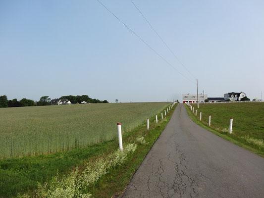 Landschaft auf Prince Edward Island.