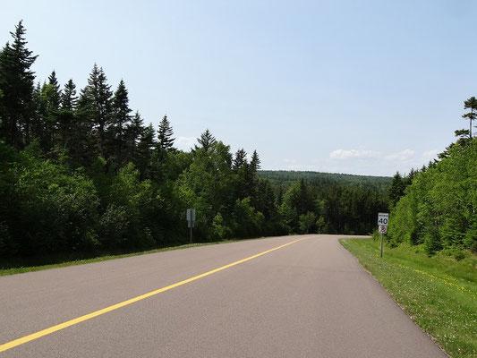 Bild mit Seltenheitswert: Intakte Strasse im Süden von New Brunswick.