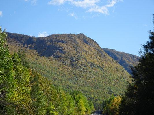 Herbsttour in Quebec: Fahrt zum Parc national de la Gaspésie.