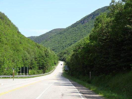 Die Strasse im Cape Breton Highlands National Park schneidet durch eine schier endlose grüne Landschaft.