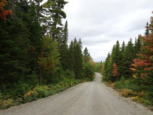 Urlaub in New Brunswick: Unterwegs im Mount Carleton Provincial Park.