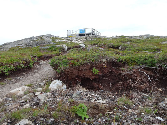 Fast am Ziel: Aufstieg zum Brimstone Head auf Fogo Island.