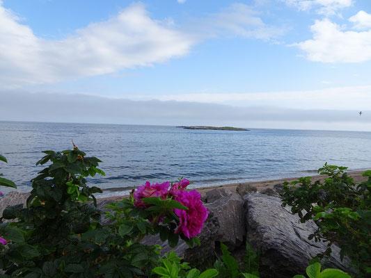 Urlaub in Quebec: Uferblick an der Anse aux Ilots.