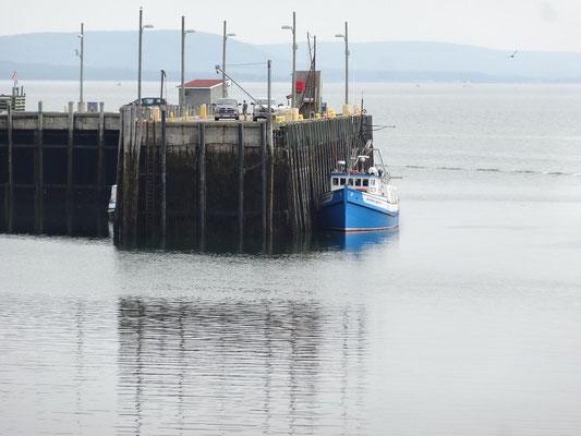 Urlaub in Nova Scotia: Ebbe im Hafen von Digby.