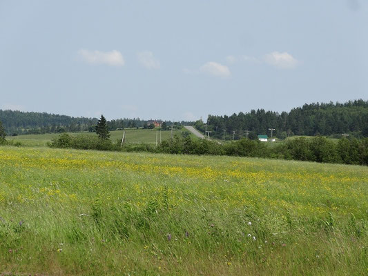 Landschaftsaufnahme aus New Brunswick.