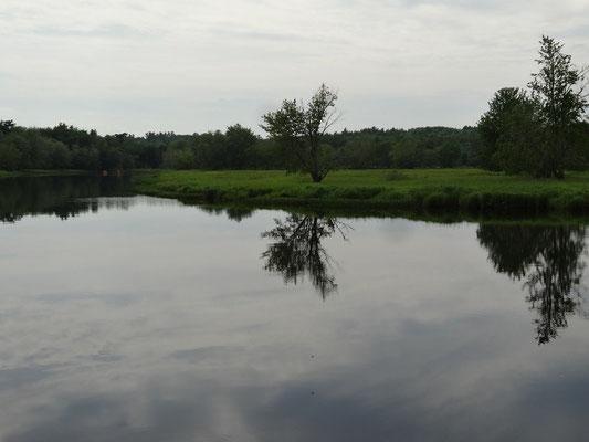 Flussbiegung im Kejimkujik National Park: Hier kann man wandern oder paddeln.