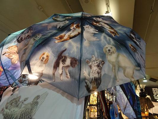 Verkaufsstände auf der Canadian National Exhibition in Toronto: Hier z.B. gibt es individuelle Regenschirme.