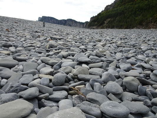 Urlaub in Quebec: Steiniger Strand bei Cap-Bon-Ami auf der Ostseite des Forillon Nationalparks.