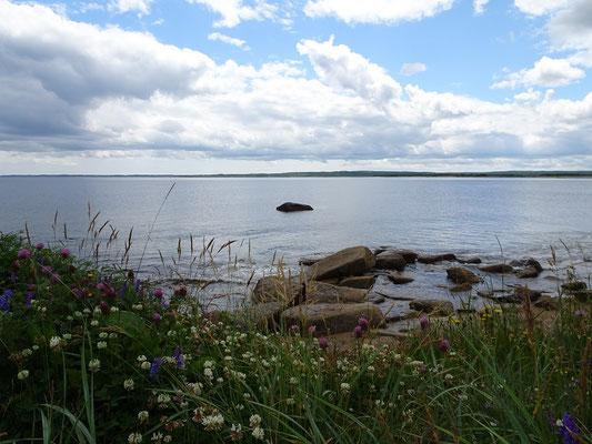 Urlaub in Neufundland: In der Nähe des Deadman's Bay Provincial Park.