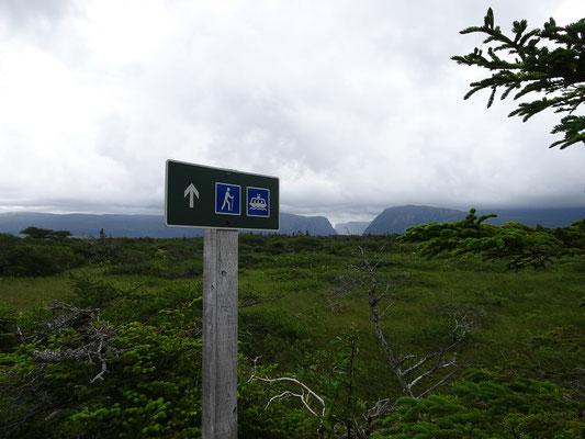 Gros Morne National Park in Neufundland: Zur Bootsanlegestelle im Western Brook Pond führt ein 3km langer Wanderweg.