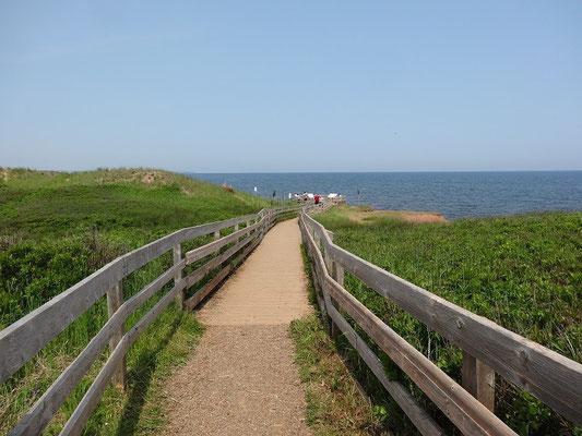 Der Erhaltung der Dünenlandschaft dient der Prince Edward Island National Park.