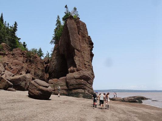 Dramatische Felsformationen an den Flowerpot Rocks.