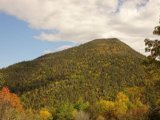 Urlaub in Quebec: Blick auf die herbstlichen Farben an einen bewaldeten Berg im Parc national de la Gaspésie.