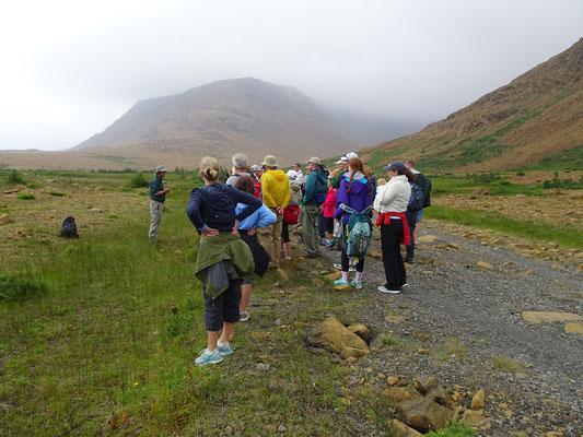 Geführte Wanderung im Gros Morne Nationalpark: Hier erklärt ein Parkranger den Besuchern die Flora und Fauna.