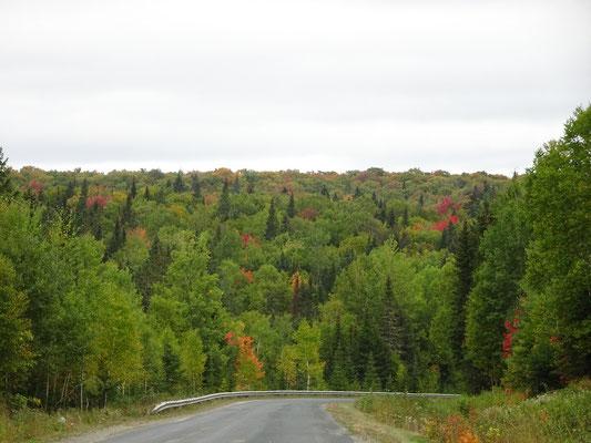 Urlaub in New Brunswick: Ankunft im Mount Carleton Provincial Park.