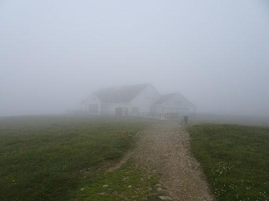 Im Nebel erkennt man kaum das Besucherzentrum der Cape St. Mary's Ecological Reserve.