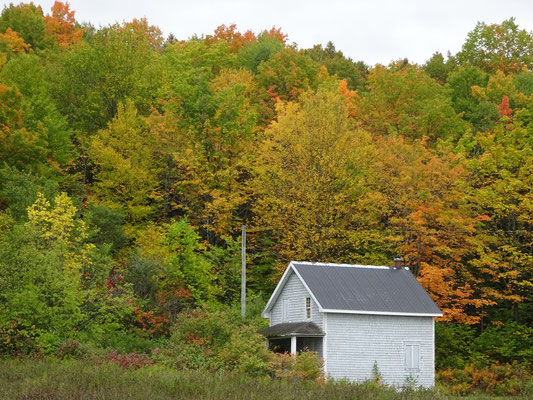 Herbst in New Brunswick: Indian Summer entlang der Appalachian Range Route.