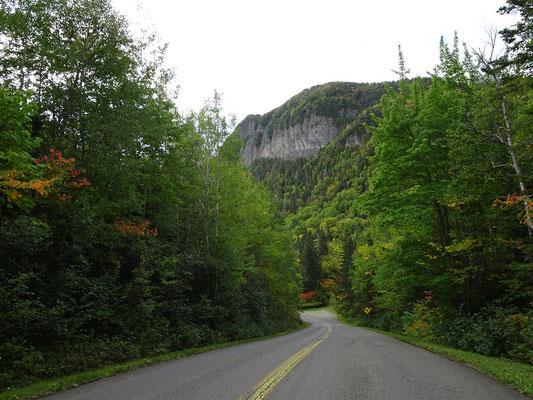 Urlaub in Quebec: Auch auf der Ostseite des Forillon Nationalparks reicht der Wald teilweise bis direkt an die Strasse heran.