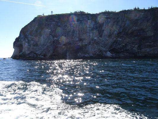 Urlaub in Quebec: Sonnenschein auf der Bootstour zur Bonaventure insel.