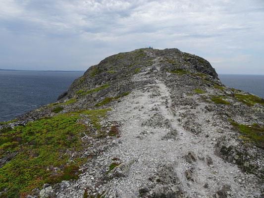 Wandern am Brimstone Head auf Fogo Island: Da vorne ist angeblich das Ende der Welt.