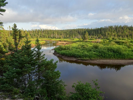 Unterwegs im Terra Nova Nationalpark: Abendstimmung am Fluss.