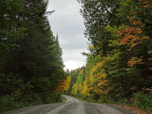 Herbsttour in Quebec: Endlose Schotterstrassen im Parc national de la Gaspésie.