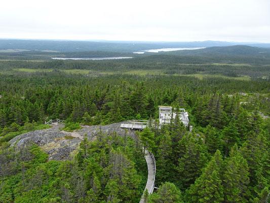 Urlaub in Neufundland: Aussichtspunkt im Terra Nova Nationalpark.