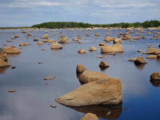 Urlaub in Neufundland: Noch ein Bild aus der Umgebung des Deadman's Bay Provincial Parks.