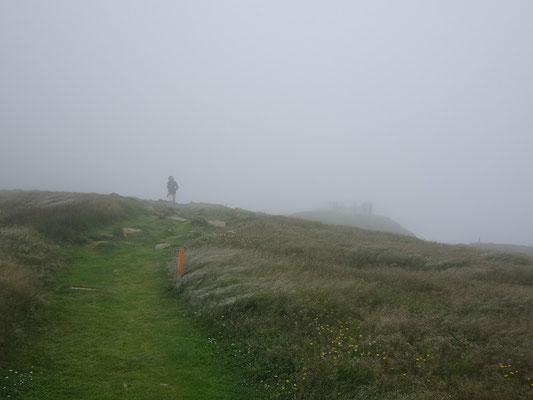 Cape St. Mary's Ecological Reserve: Die Vogelfelsen sind fast erreicht.