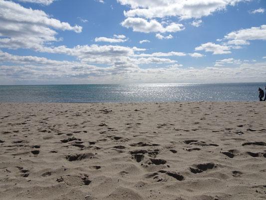 Sonnenschein am Woodbine Beach.