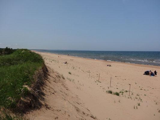Baden im Prince Edward Island National Park: Strand gibt es ohne Ende.