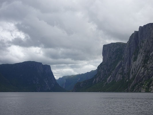 Hinter jeder Kurve neue Fotomotive: Bootstour durch den Fjord des Western Brook Pond in Neufundlands Gros Morne National Park.