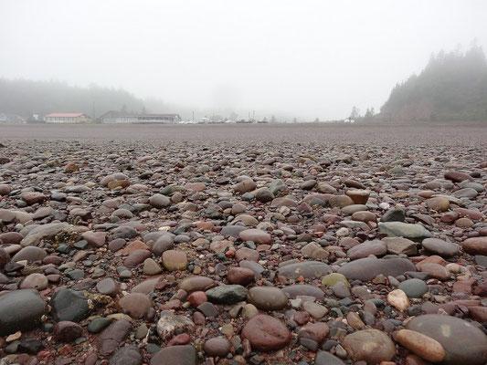 Blick zurück ans Ufer bei einer Wanderung am Strand von St. Martins, New Brunswick.