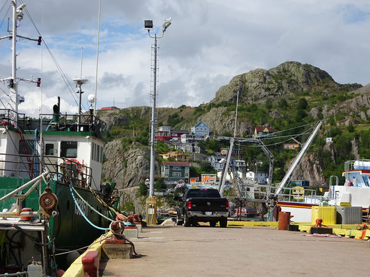 Urlaub in Neufundland: Abstecher in den Hafen von St. John's.