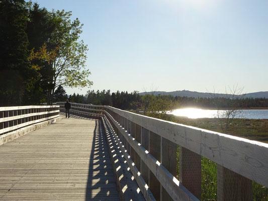 Urlaub in Quebec: Gleissendes Sonnenlicht im Westen des Forillon Nationalparks.