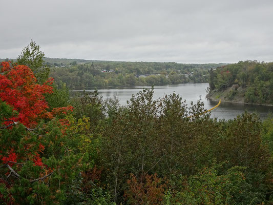 Urlaub in New Brunswick: Blick auf den Saint John River in Grand Falls.