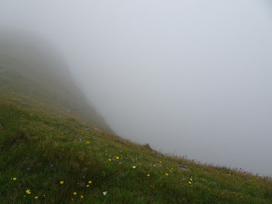 Gerade bei Nebel gilt in der Cape St. Mary's Ecological Reserve: Immer auf dem Weg bleiben!